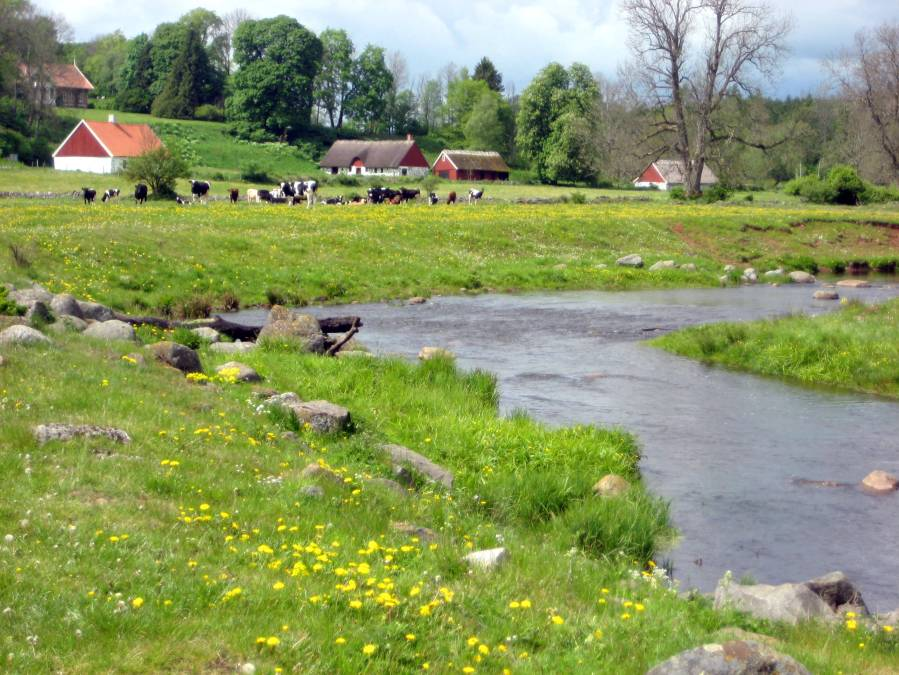 Rural wanderings in Skåne, Sweden