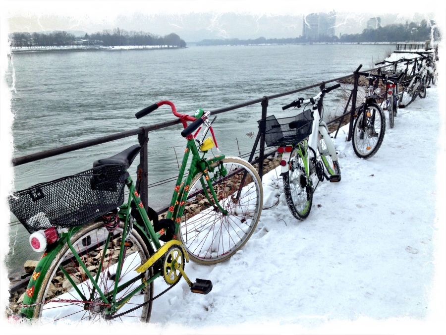 Bike parking on the Rhine