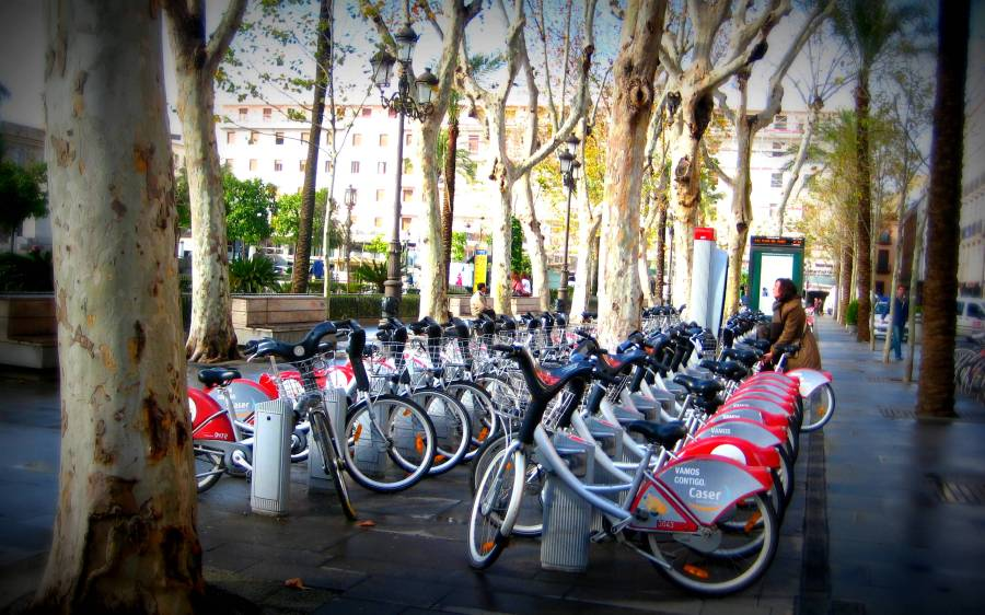 SEVici, Seville´s public bike rental system. Started in 2007, it has 2500 bicycles at 250 stations around the city - all of which are about 300 metres apart. There are 120 km of cycle lanes in the city, making it one of the best-served cities in Spain for this extremely clean, green and healthy means of transport. To date, SEVici´s bikes have been used 10 million times, with an average 25,000 daily uses.