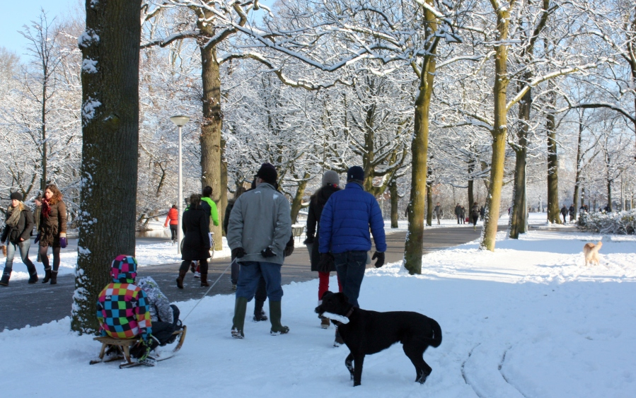 Despite the lack of hills for sleeding, most Dutch families still own a sleed