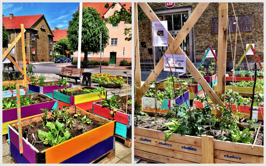 Malmö: This garden, coordinated by Ecolivs (a local food shop) and partners, serves to offer free local veggies for passersby - bringing green space and local edible goodness to the neighbourhood.
