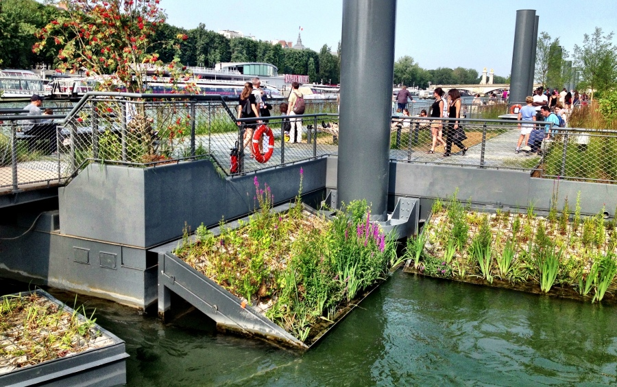 Cleaning the Seine River with reed beds - urban ecosystem services in action!