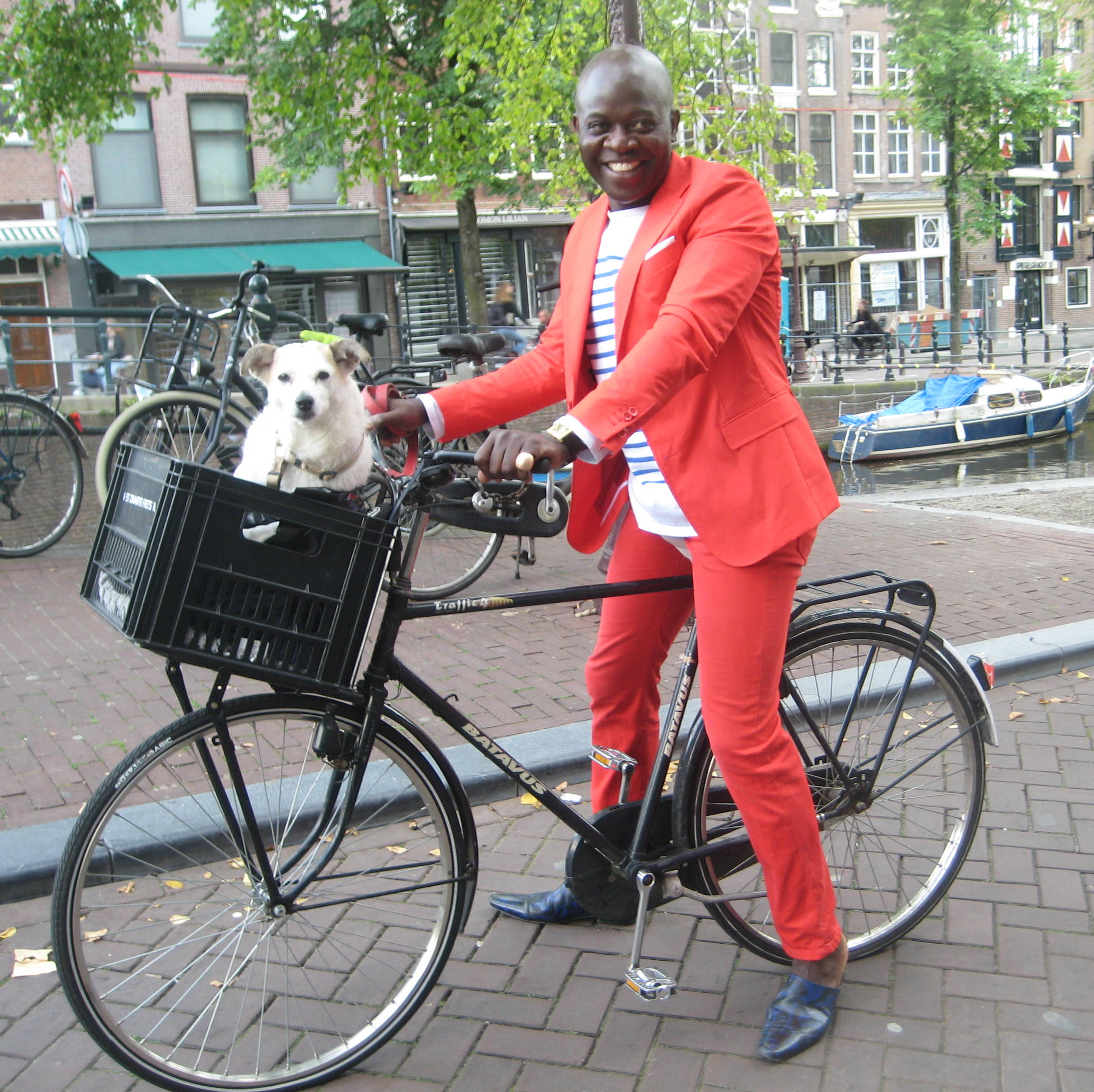 Amsterdam Dutch Dogs Know How To Ride The Urban Observer