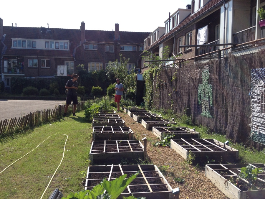 Visiting an after school programme garden. The teacher explained to us that circa 15 children are responsible for a square garden, after which they harvest the square and learn to cook the food they grew.