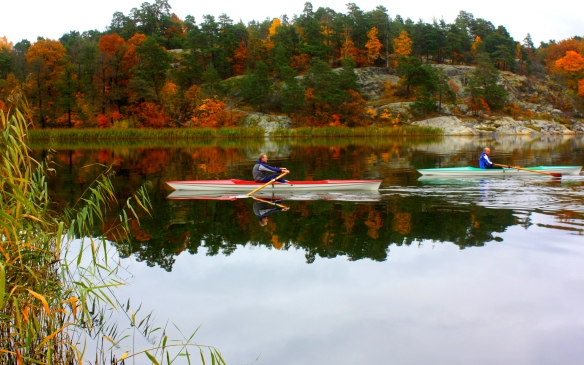 Kayaking on Brunnsviken