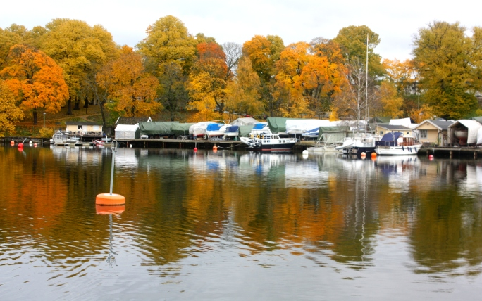 Sailboats, motor boats, kayaks and swimmers navigate the waters...