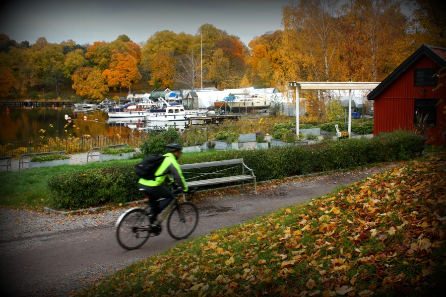 Park access also import an: one can arrive by foot, bus, tram, bicycle or boat, as well as by car.
