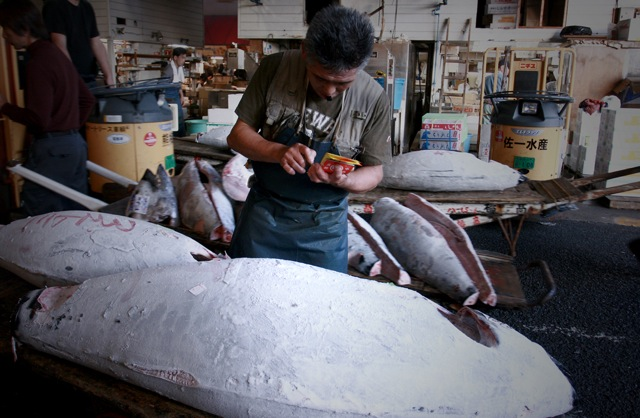 "When discussing international trade of tuna or other food products, there is also the ""product versus process"" issue: a country can specify the quality of the food product, but not the process by which it is produced. This means that particular fishing methods (e.g. use of specific hook types, bycatch of other marine species) that may seem unsustainable are not reason enough to ban importation of a given fish product. Image: Bluefin tuna in Tskiji Market, taken by Mike Markovina/Marine Photobank"