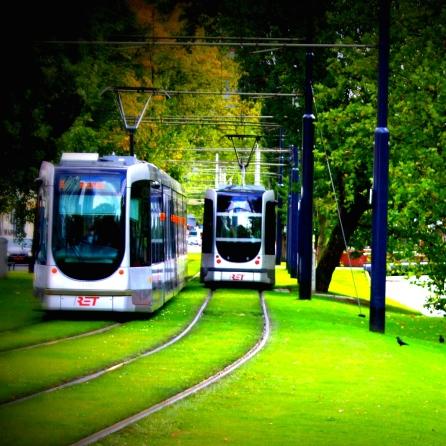 Rotterdam Green Tram
